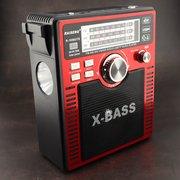 Радиоприемник Raiseng R-1058UTS