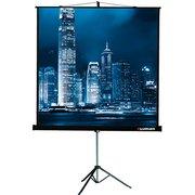 Проекционный экран на треноге Lumien 183x244см Master View LMV-100108 4:3 напольный рулонный