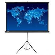 Экран Cactus 150x150см Triscreen CS-PST-150x150 1:1 напольный рулонный черный