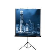 Экран на треноге Lumien 203x203см Master View LMV-100109 1:1 напольный рулонный
