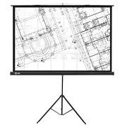 Экран Cactus 127x127см Triscreen CS-PST-127X127 1:1 напольный рулонный черный