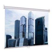 Проекционный экран Lumien Eco Picture LEP-100105 настенный с механизмом возврата / 160x160 см