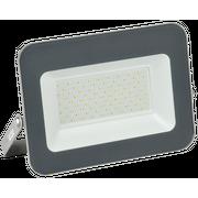 Прожектор Iek LPDO701-70-K03 СДО 07-70 светодиодный серый IP65 6500 K