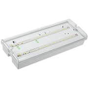 Светильник аварийный IEK LDPA0-5042-3-65-K01 ДПА 5042-3 постоянного/непостоянного действия 3ч IP65