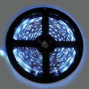 Лента светодиодная Ecola S2LB05ESB 4,8W/m 12V IP20 8mm синяя 5м.