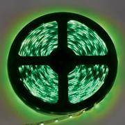 Лента светодиодная Ecola S2LG05ESB 4,8W/m 12V IP20 8mm зеленая 5м.